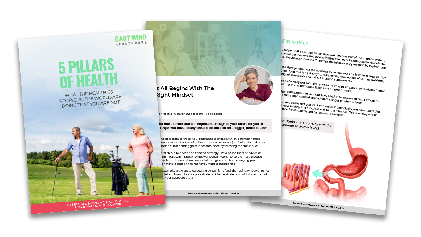 Wellness ebook